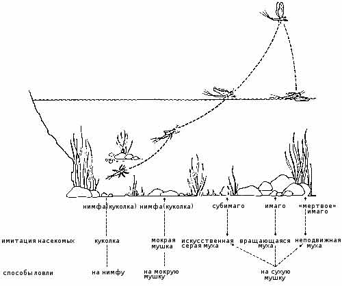 как ловить рыбу на ниток